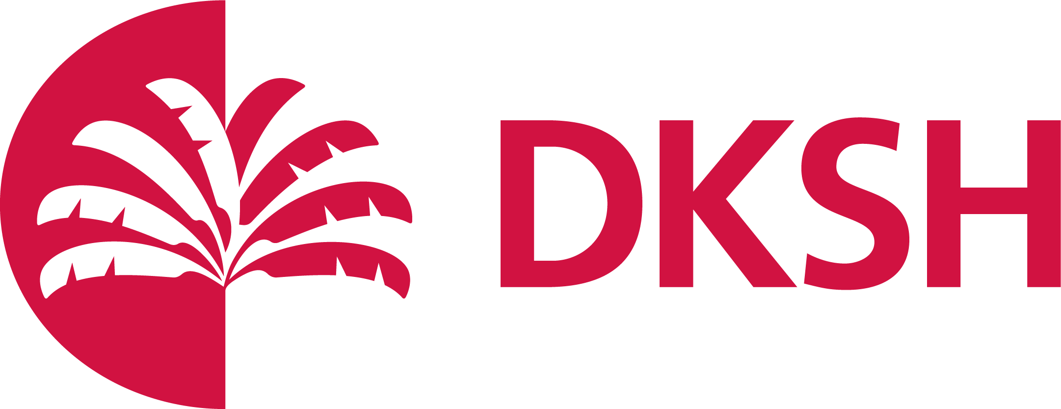 DKSH Vietnam Co., Ltd. logo